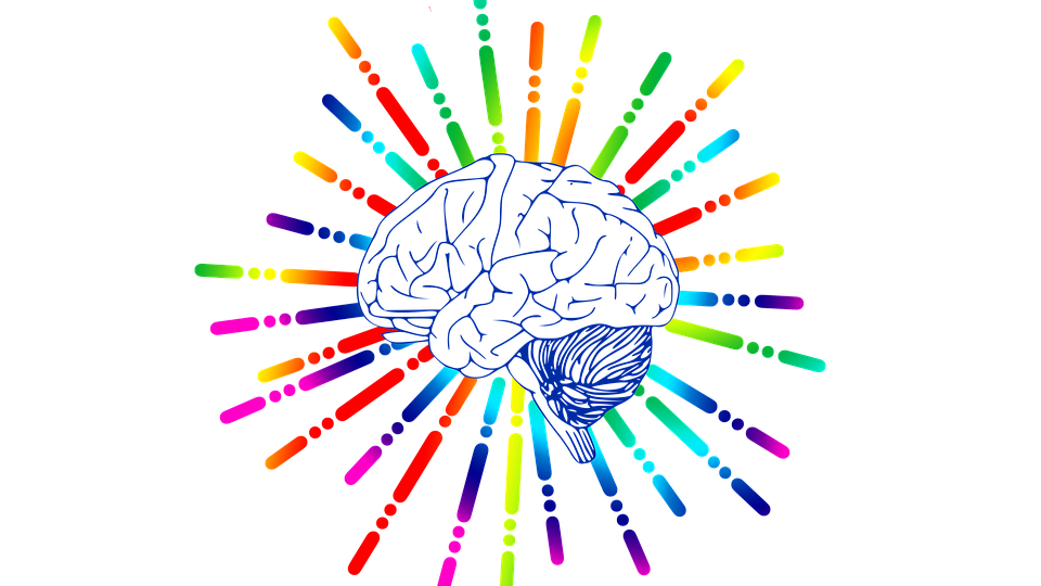 brain icon 1